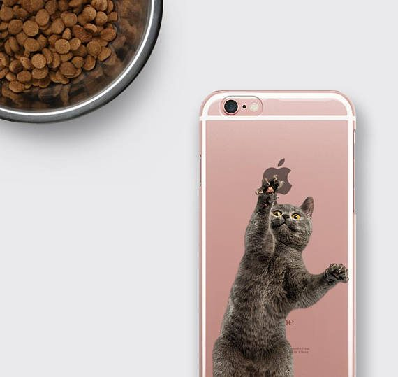 Cat iPhone 8 Case, Cat Samsung Galaxy S8 Plus Case